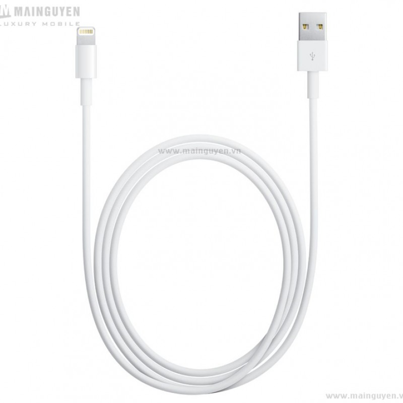 Apple Lightning to USB Cable (1m) (MD818ZM) 1
