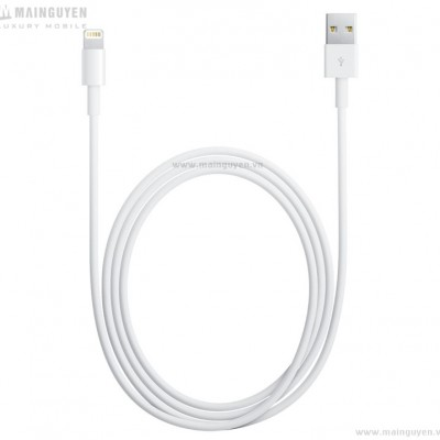 Apple Lightning to USB Cable (1m) (MD818ZM)