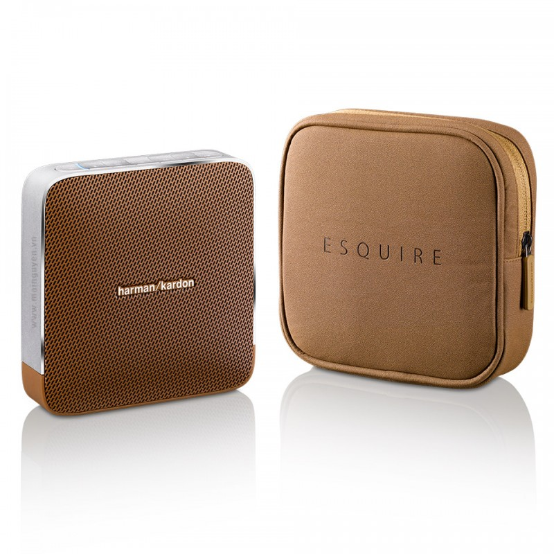 Loa Harman Kardon Esquire 9