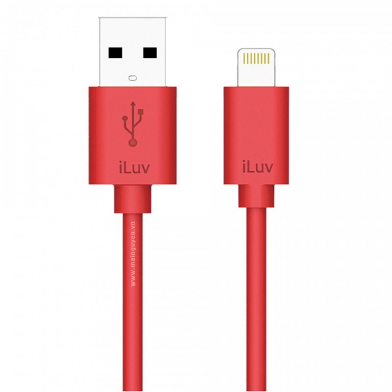 iLuv High Quality Lightning Cable 7