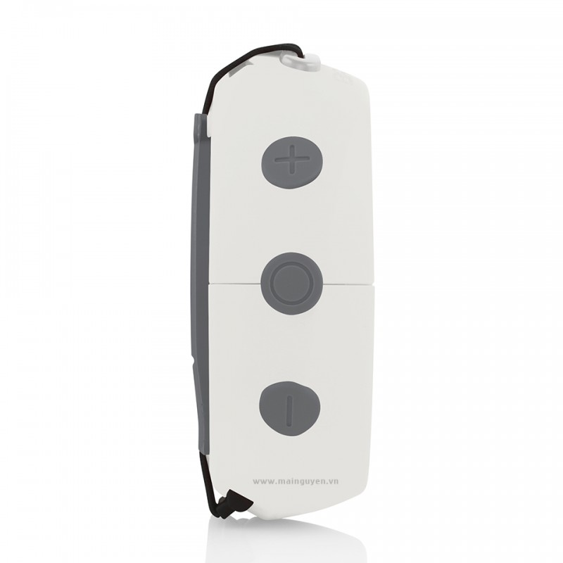 Loa Bluetooth Braven 105 14