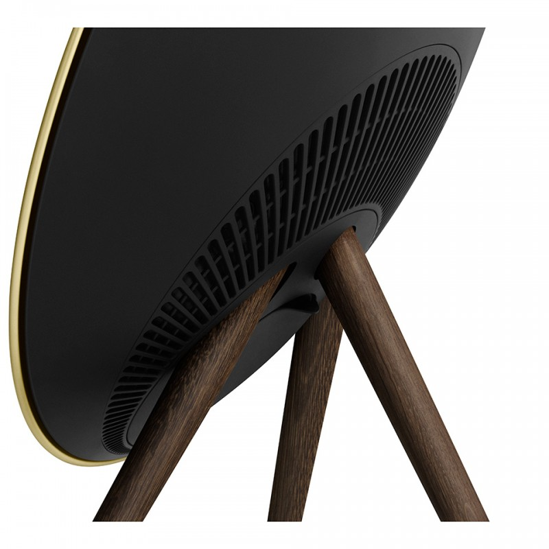Loa B&O BeoPlay A9 (4th Gen) Special Edition 8